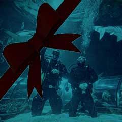 Kattegatcentret går igen i år i Vinterfisk