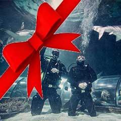 Juleoplevelser i december!
